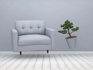 Living Room, Flooring, House, Residential Building, Empty, Loft, Sofa, Plant